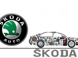 Piese auto Skoda