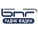 Radio Vidin